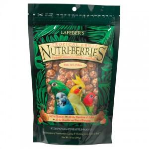 NB-Tropical-Fruit-small-bird-82640