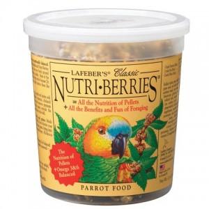 NB-parrot-tub-81650-480x480