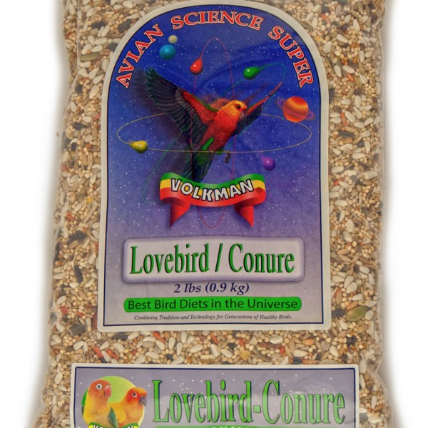 Volman-lovebird-conure-2b__43521_zoom