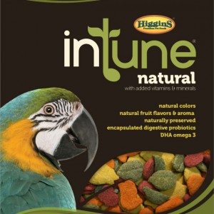 icon-img-higgins_in_tune_macaw