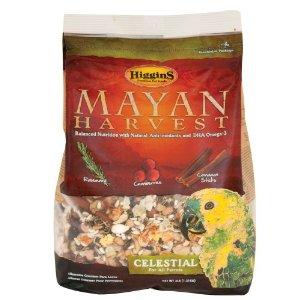 mayancelestial