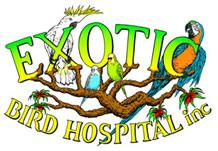 Exotic Bird Hospital